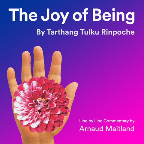 The Joy of Being, Tarthang Tulku - line by line commentary by Arnaud Maitland - Download