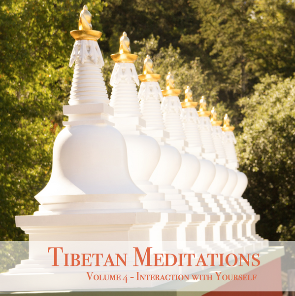Tibetan Meditations Volume 4 - Interaction with Yourself - Dharma Publishing