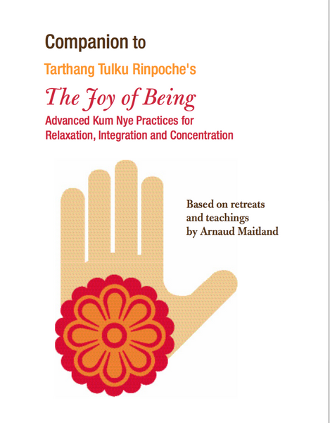 Joy of Being Companion Guide - Dharma Publishing
