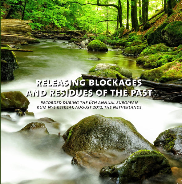 Releasing Blockages & Residues of the Past - Dharma Publishing