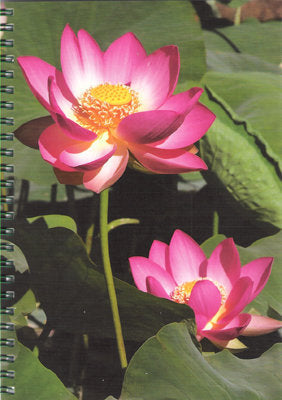 Lotus - Notebook - Dharma Publishing