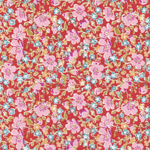 Load image into Gallery viewer, Liberty Tana Lawn - John (D)