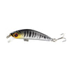 Image of Bass Fishing Lure