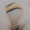 Image of Feather Flying Fishing Bait