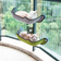 Cat Furniture - Window Mounted Hammock