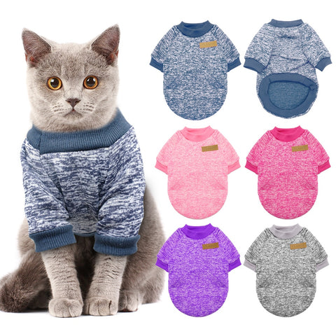 Sweater For Cats - squishbeans