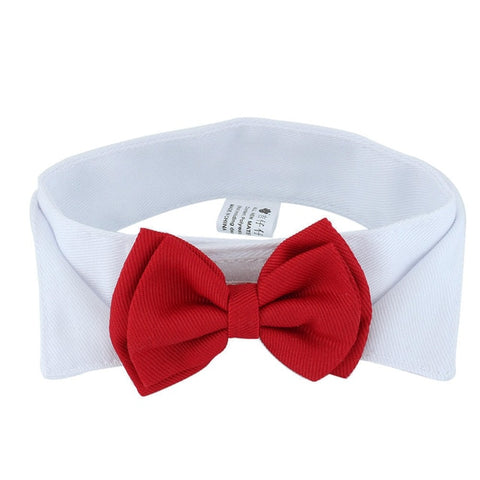 Red Bowtie Accessory - squishbeans