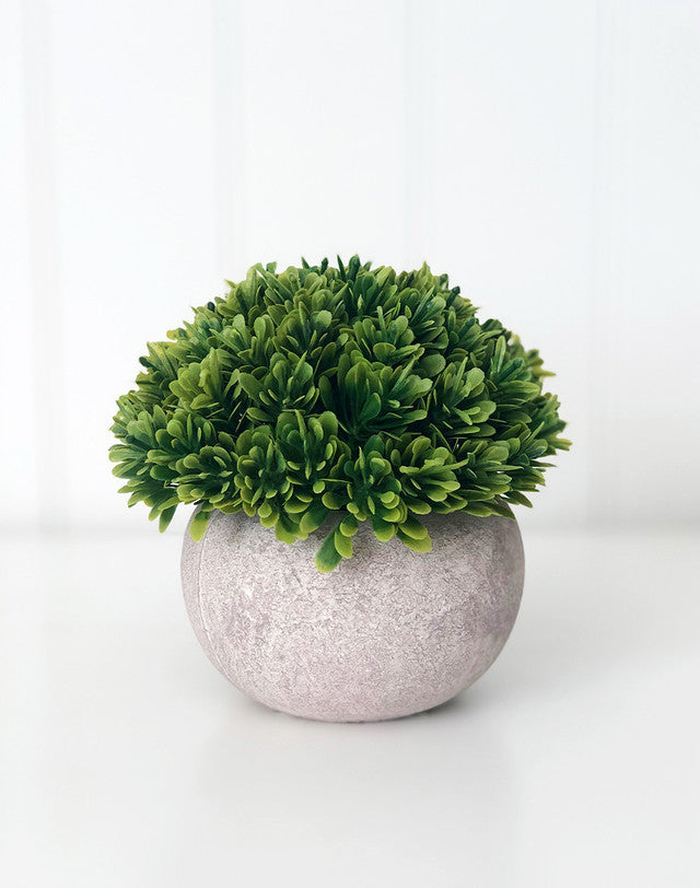 Tray Decor - Stone Pot & Foliage