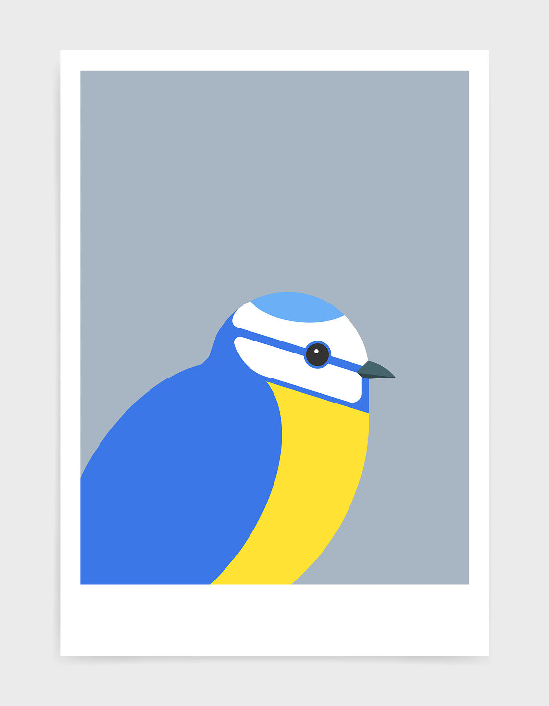 illustration of a blue tit bird against a grey background