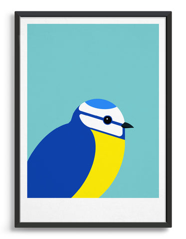 framed illustration of a blue tit bird against a aqua blue background