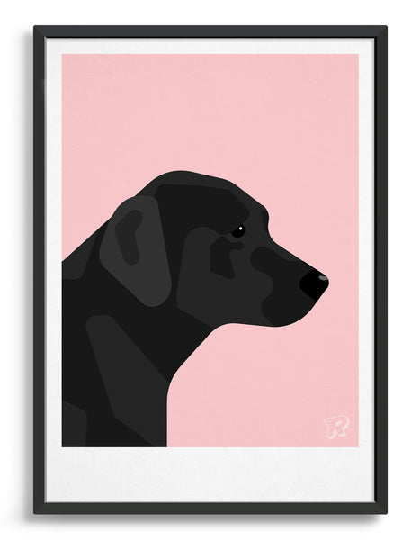 framed art print of a black labrador in profile against a pink background