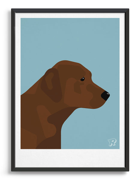 Framed modern dog print of a chocolate labrador in profile against a light blue background