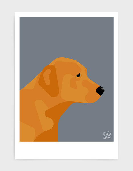 modern dog art print of a fox red labrador in profile against a dark grey background