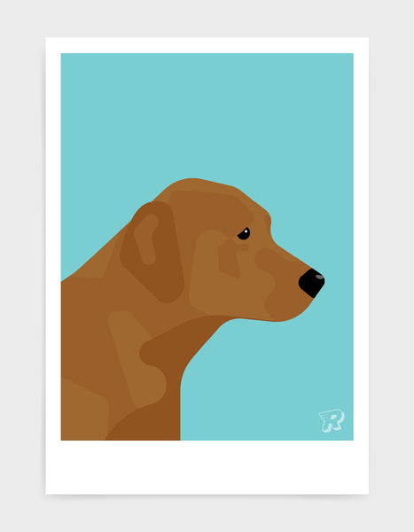 modern dog art print of a fox red labrador in profile against a aqua blue background