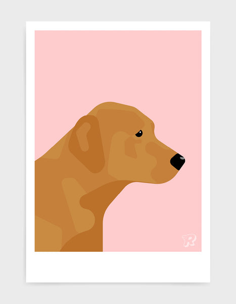 modern dog art print of a fox red labrador in profile against a pink background