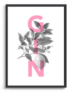 Gin typography print with monochrome botanical archive drawing and pink GIN wording