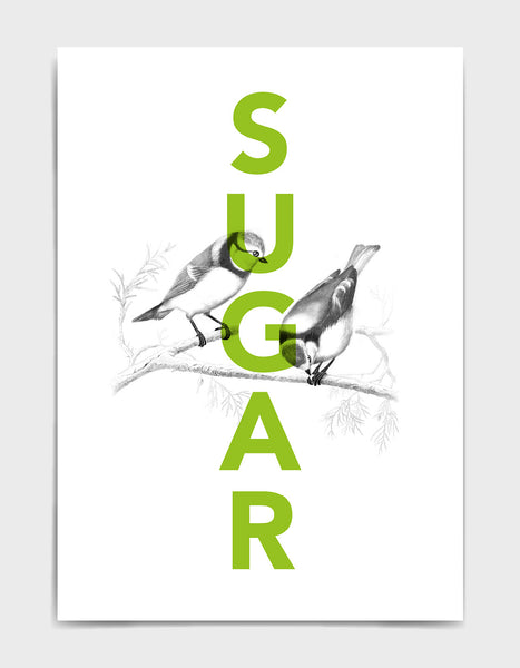 sugar tits typography print with green sugar text overlaid black line drawing of some blue tits
