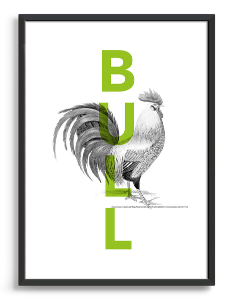 cock and bull typography poster - green bull text overlaid on monochrome cock line drawing