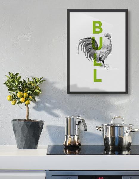 lifestyle image of a kitchen wall featuring cock and bull typography poster - green bull text overlaid on monochrome cock line drawing