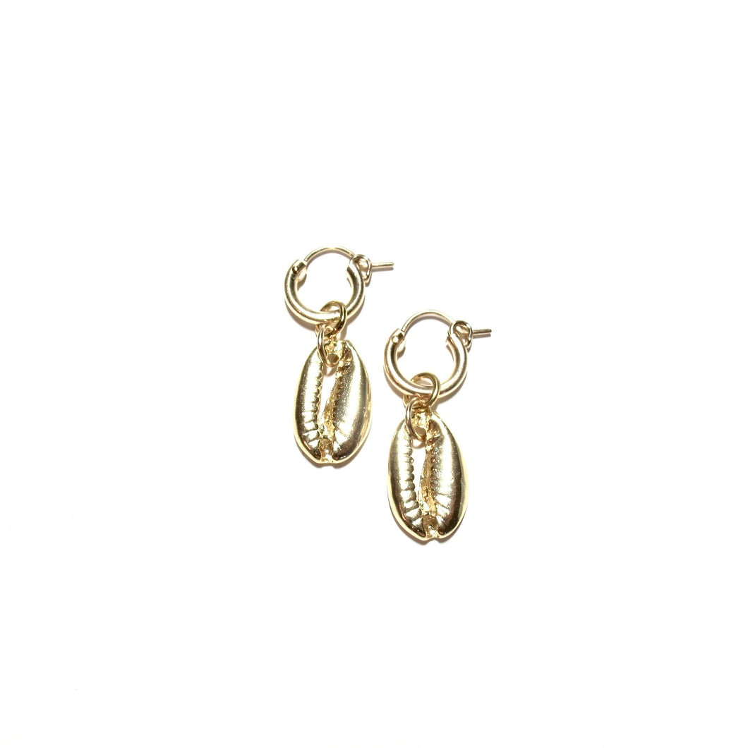 gold cowrie small hoops