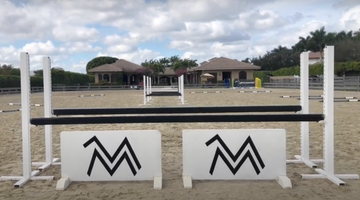 What's in Your Arena? | Megan McDermott