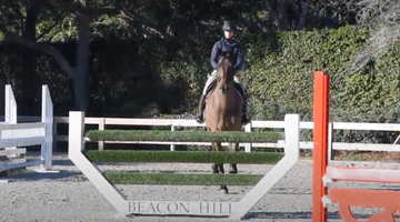 What's in Your Arena? Stacia Klein Madden at Beacon Hill Show Stables