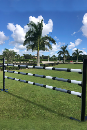 Aluminum Schooling Stick Standards with Round Poles