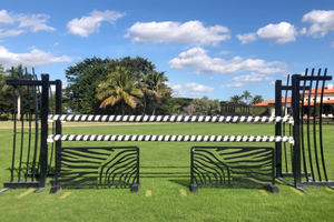 Zebra fillers with aluminum fan standards and spiral poles from Dalman Jump Co.