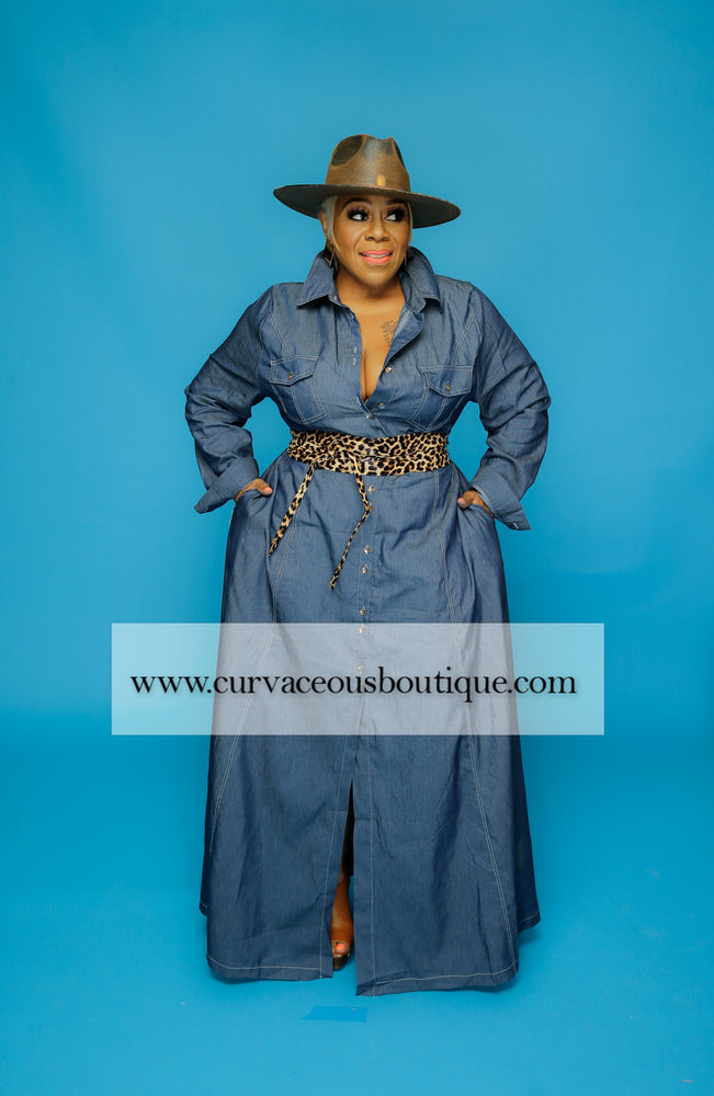 Stitched in Curves Denim Dress