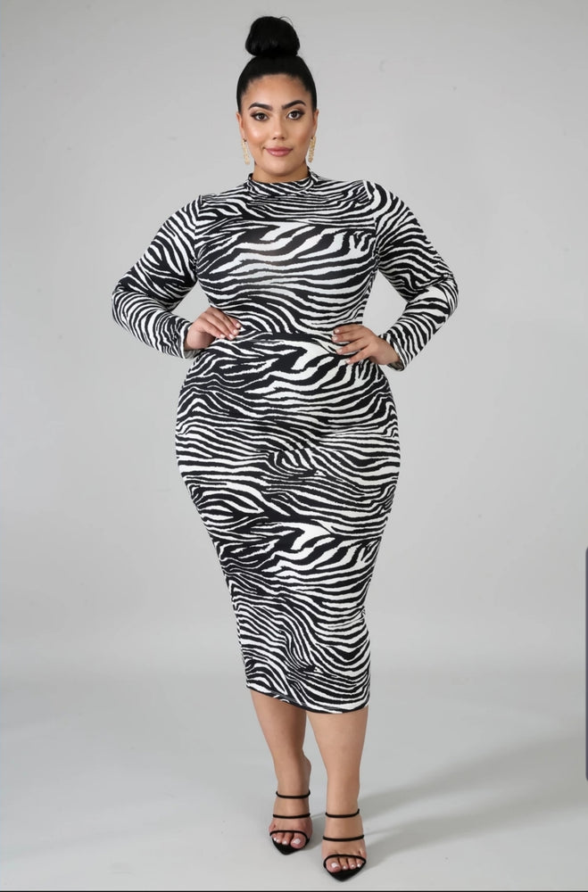 Zebra Bodysuit Skirt Set