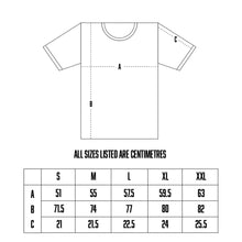 Load image into Gallery viewer, CLASSICS TEE - GREY