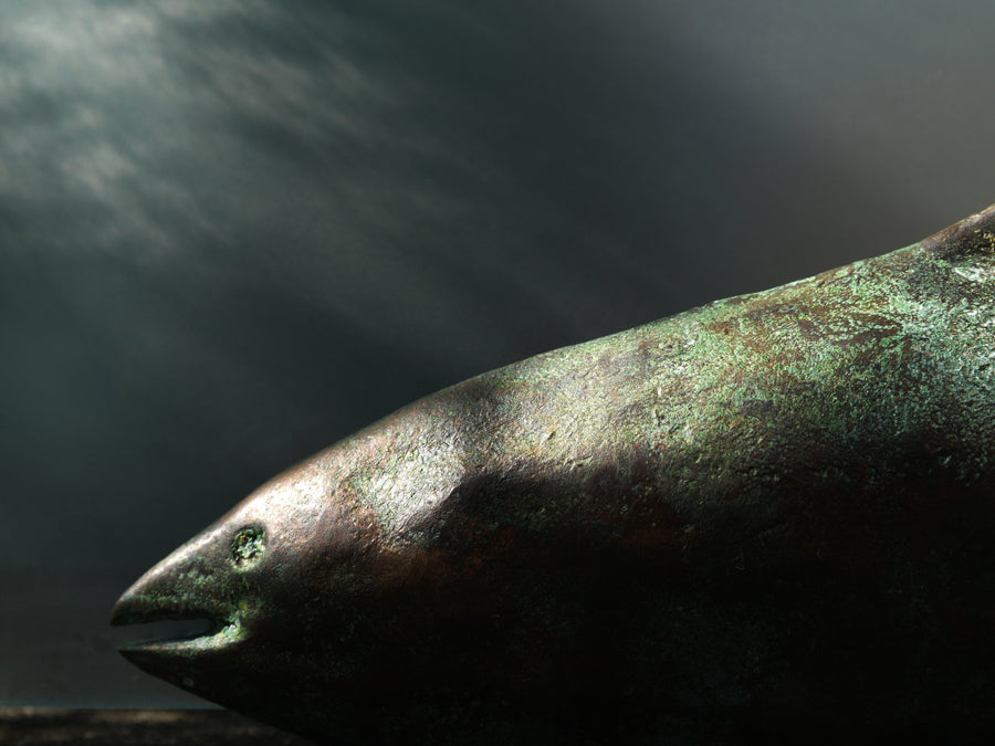 The Salmon of Knowledge - Mallon Ireland