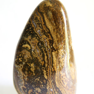 Large Ocean Jasper with Orbicular Pattern