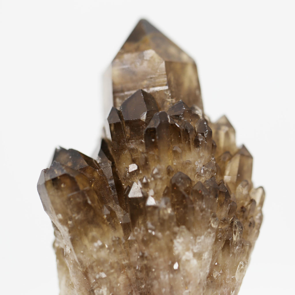 Smoky Quartz and Citrine Cluster