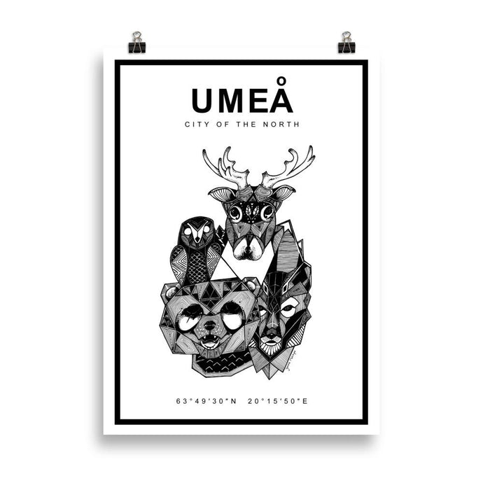 Umeå poster with coordinates and drawings of Northern Swedish animals.