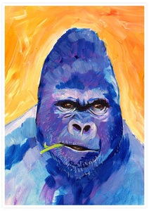 Gorilla Animal Portrait