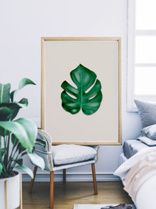 Gorgeous Monstera Leaf Art Print in a bedroom