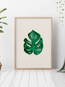 Stunning Monstera Leaf Art Print showcased on a bedroom floor