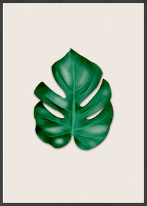 Beautiful Monstera Leaf Art Print shown in a frame