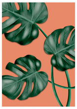 Load image into Gallery viewer, Beautiful Monstera Wall Art
