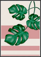 Load image into Gallery viewer, Beautiful Monstera Deliciosa Print in a black frame