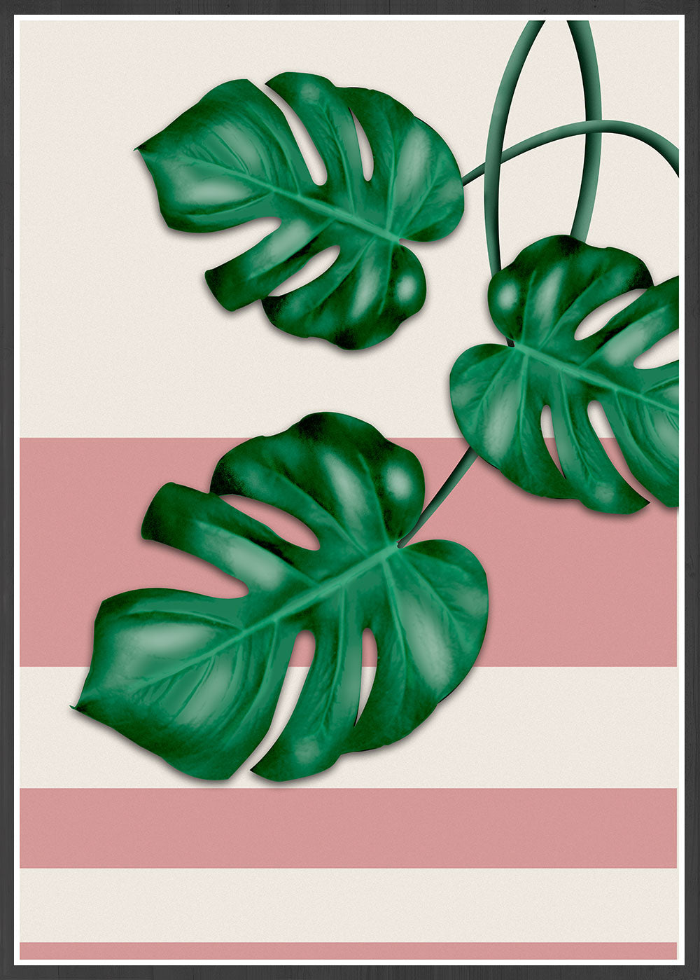 Beautiful Monstera Deliciosa Print in a black frame