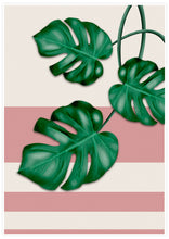 Load image into Gallery viewer, Pink Monstera Deliciosa Print with white border