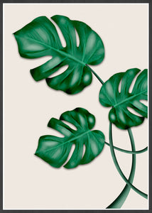 Monstera Print Wall Art in a black frame