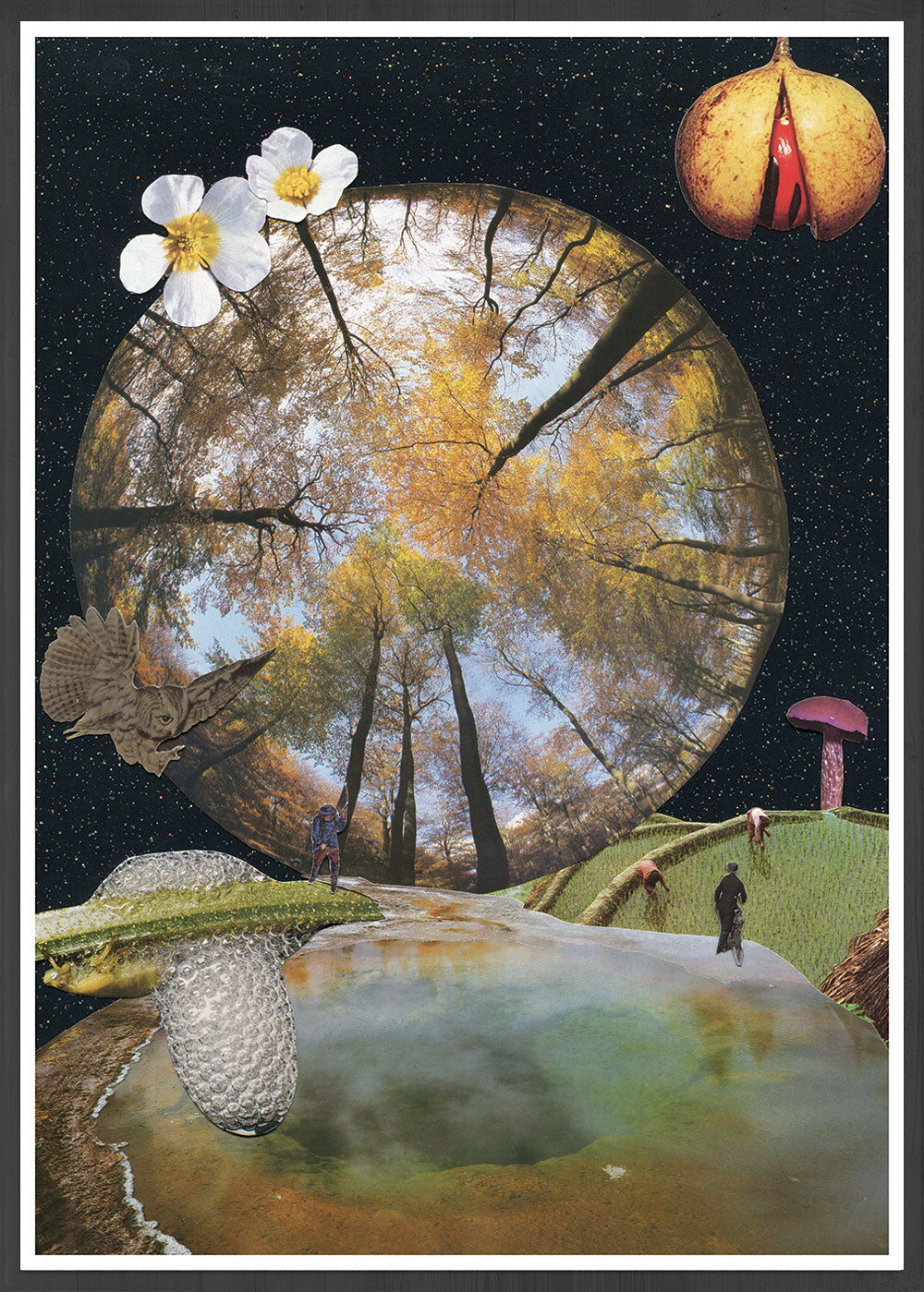 Natures Way Surreal Collage in frame