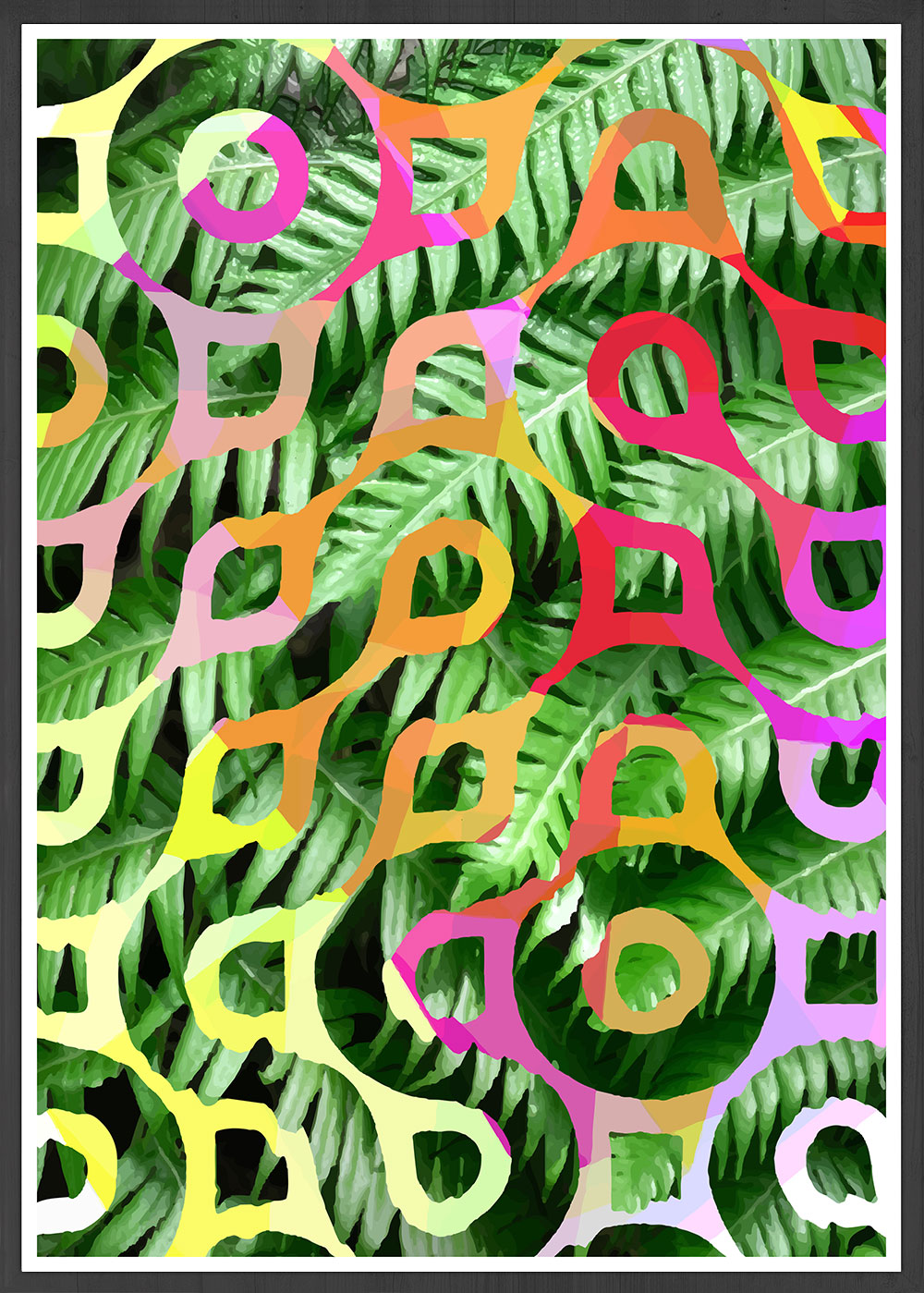 Tropicalia 5 Palm Leaf Print