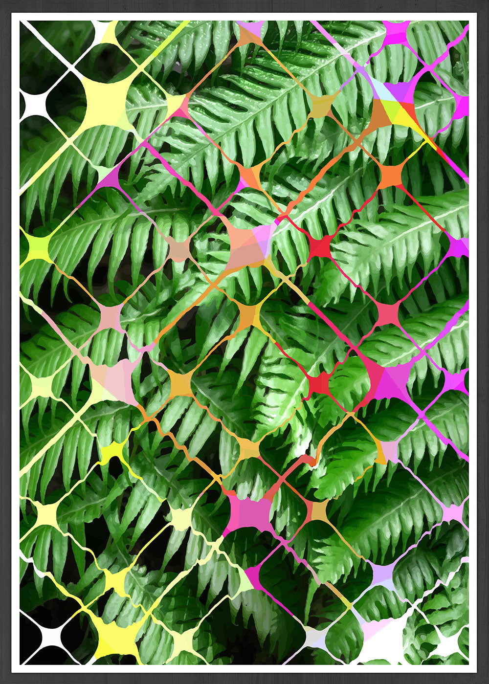 Tropicalia 8 Palm Art Print