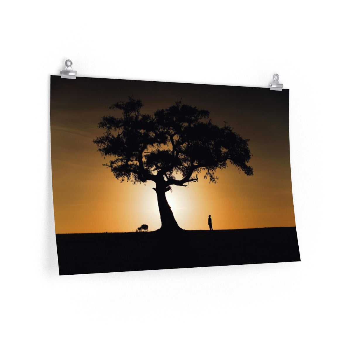 African Sunrise - Wide Print