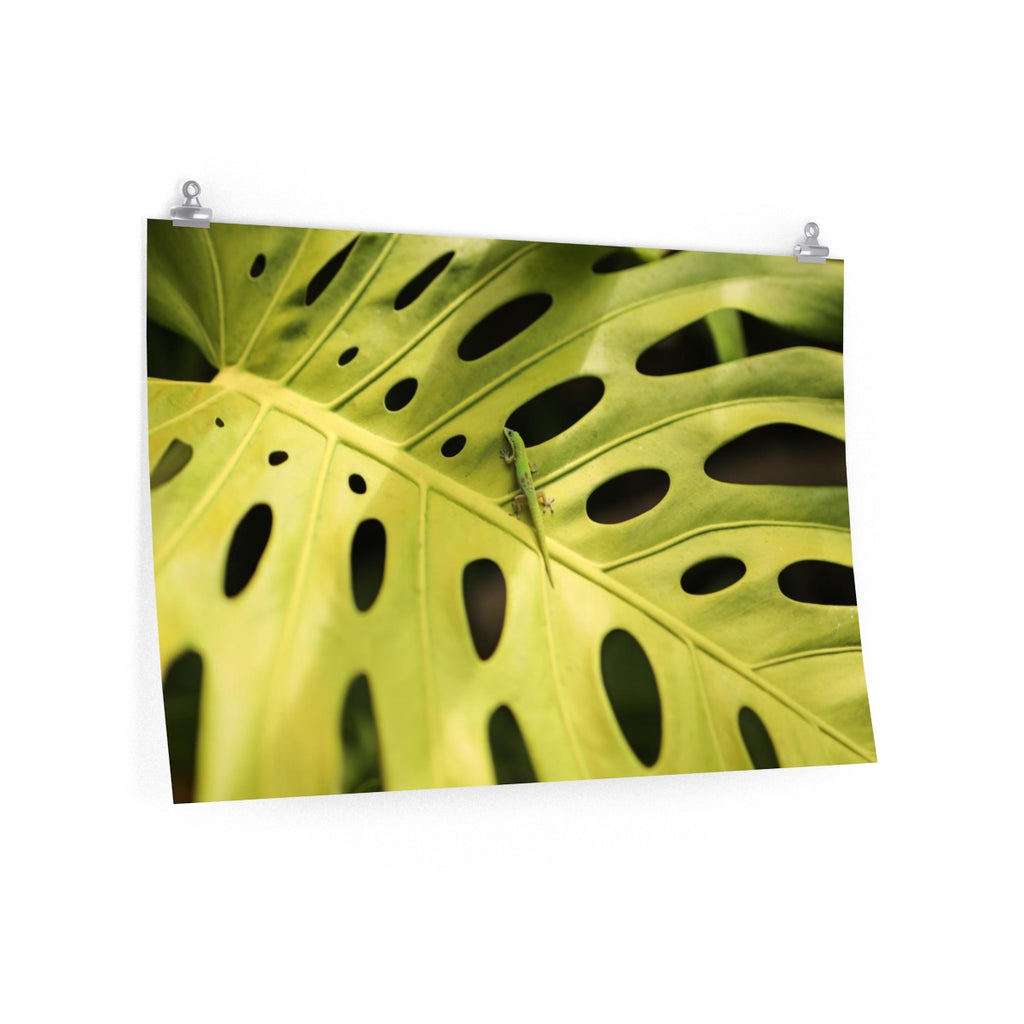 Lizard Leaf - Wide Print