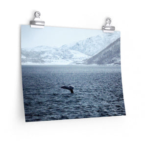 Norway Whale - Wide Print